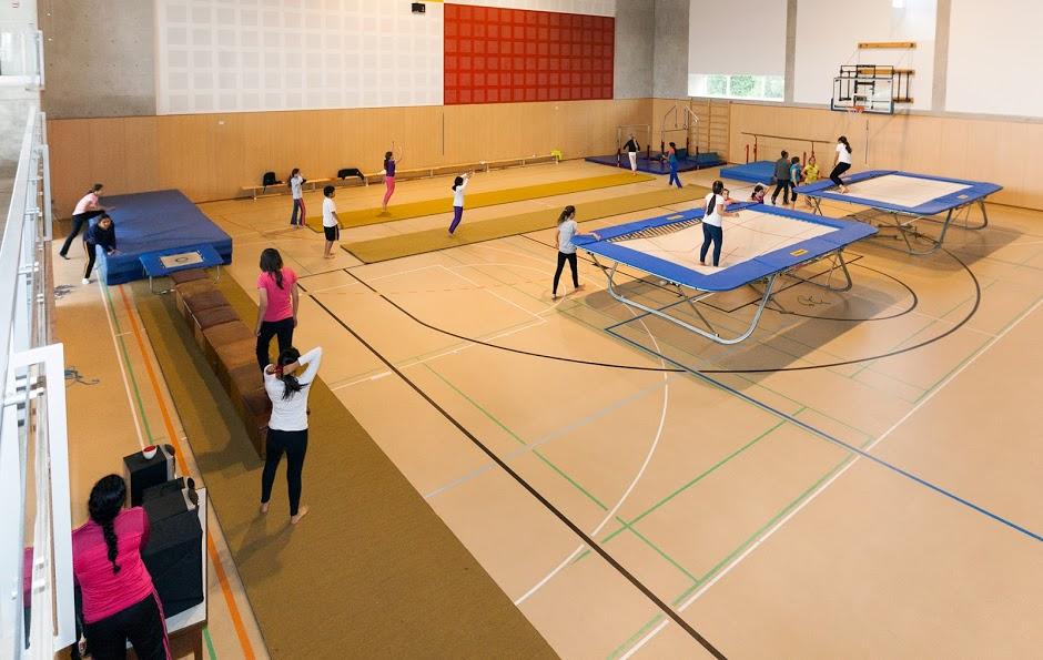 Gimnasia trampol n deporte extracurriculares for Deportes de gimnasia
